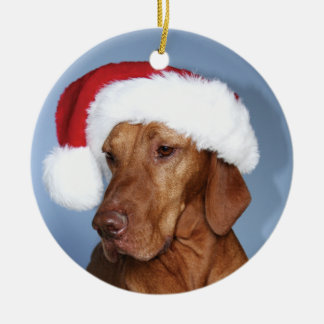Christmas Ornament Rogan