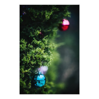 Christmas Ornaments Photo Art