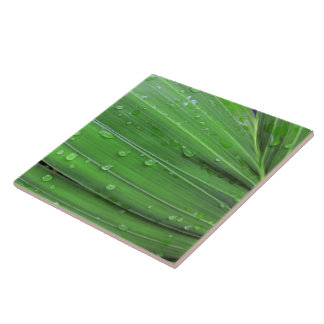Christmas Palm and Raindrops Tile