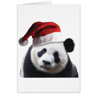 Christmas Panda Bear Card