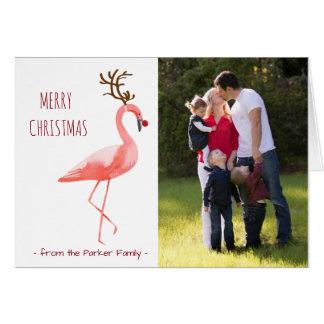 Christmas photo card funny Rudolph flamingo