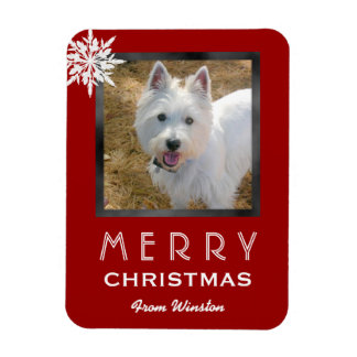 Christmas Photo Greeting From the Dog Pet Magnet