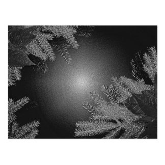 Christmas Poinsettia Black And Grey Post Card
