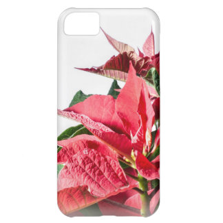 Christmas Poinsettia Case For iPhone 5C