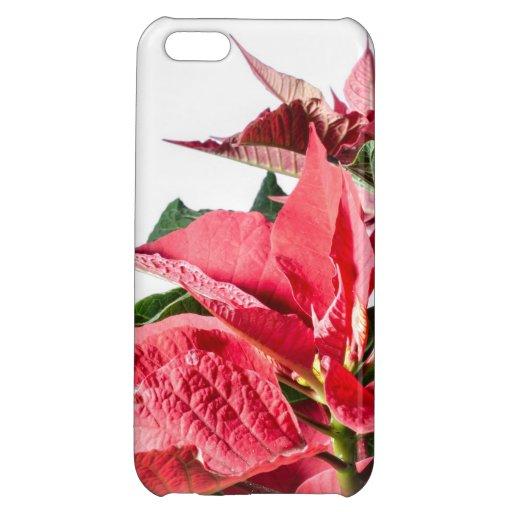 Christmas Poinsettia iPhone 5C Covers