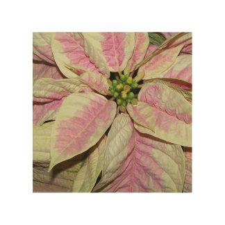 Christmas Poinsettia - Pink Wood Print