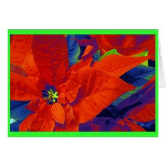 Christmas Poinsettias Card