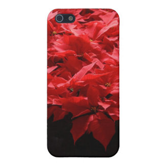 Christmas Poinsettias iPhone 5/5S Case