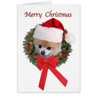 Christmas, Pomeranian Dog, Santa Hat Greeting Card