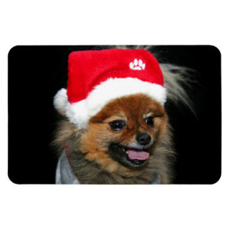 Christmas pomeranian flexible photo magnet