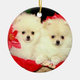 Christmas Pomeranians Ornament