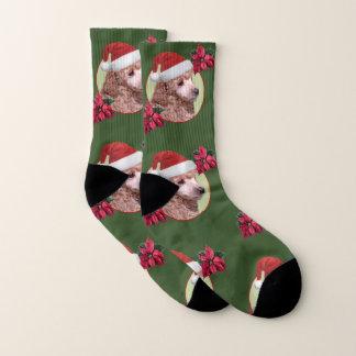 Christmas poodle  dog socks 1