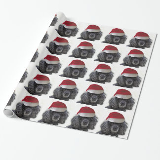 Christmas poodle dog wrapping paper
