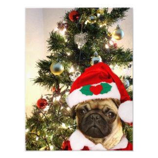 Christmas Pug dog Photo