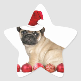 Christmas pug dog star sticker