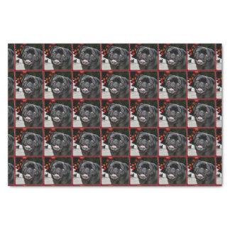 Christmas pug dog tissue paper