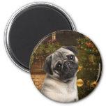 Christmas Pug Magnet Magnets
