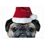 Christmas pug postcard