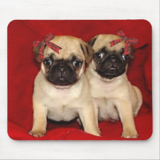 Christmas pug puppies mouse pads
