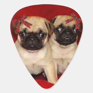 Christmas pug puppies plectrum