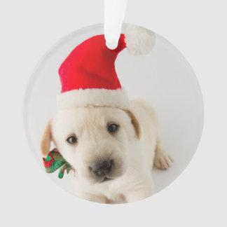 Christmas Puppy - Portrait Of Cute Labrador Ornament