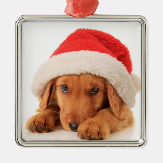 Christmas Puppy Wearing A Santa Hat Christmas Ornament