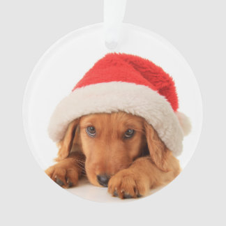 Christmas Puppy Wearing A Santa Hat Ornament