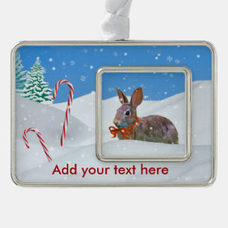 Christmas, Rabbit, Snow, Candy Canes, Customizable Silver Plated Framed Ornament