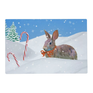 Christmas, Rabbit, Snow, Candy Canes Placemat