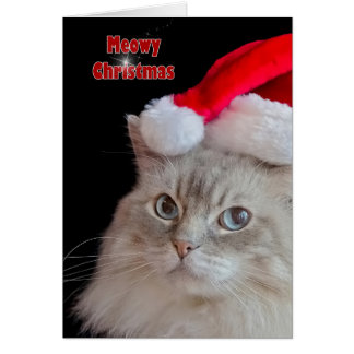 Christmas Ragdoll Cat Card