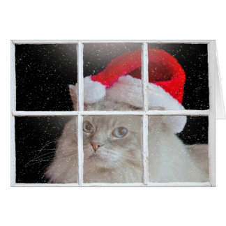 Christmas Ragdoll Cat Card