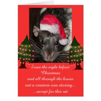 Christmas rats greeting card