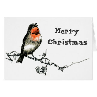 Christmas Robin Cards