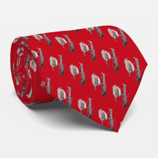 Christmas robin on tree branch  illustration tie