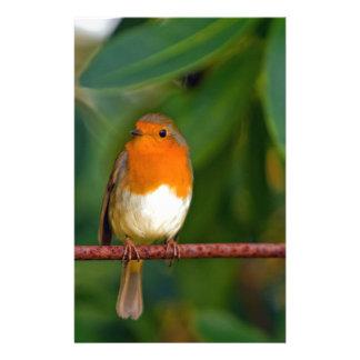 Christmas Robin Stationery