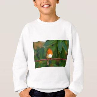 Christmas Robin Sweatshirt