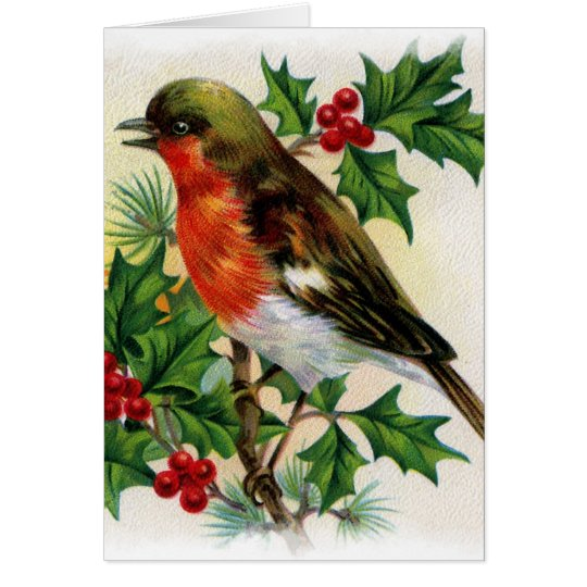 Christmas Robin Vintage Illustration Card
