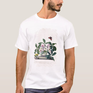 Christmas Rose (Helleborus niger) and Winter Aconi T-Shirt