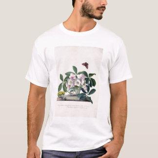 Christmas Rose (Helleborus niger) and Winter Aconi T-Shirt