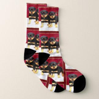 Christmas Rottweiler puppies dog socks 1