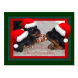 Christmas Rottweilers: A Time of Joyous Giving