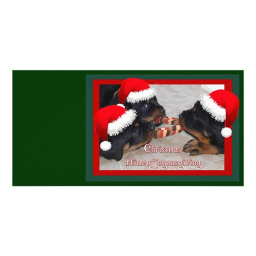 Christmas Rottweilers: A Time of Joyous Giving Personalized Photo Card