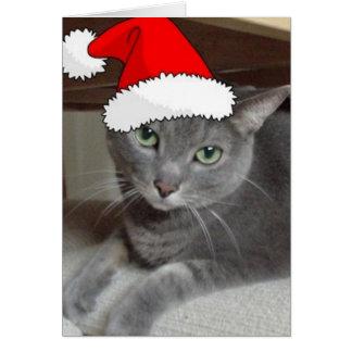 Christmas Russian Blue Gray Cat Greeting Card