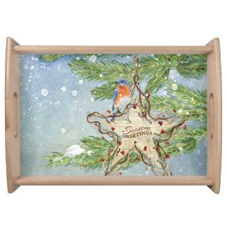 Christmas Rustic Nature Blue Bird birch Star Serving Tray