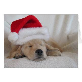 Christmas Santa Hat Pup Greeting Card