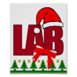 CHRISTMAS SANTA LABORATORY POSTER
