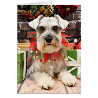 Christmas - Schnauzer - Abby Greeting Card