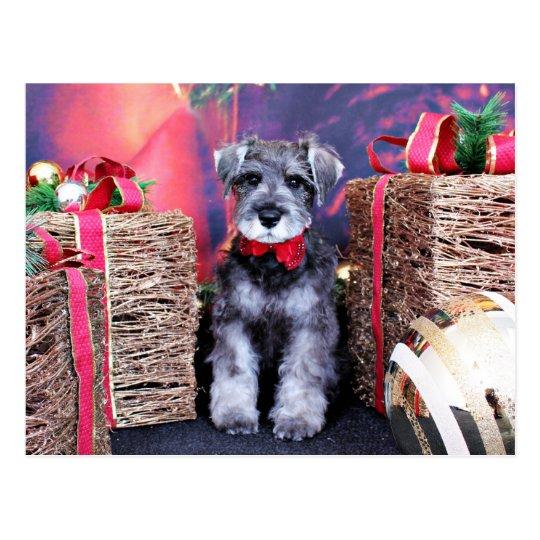 Christmas - Schnauzer - Gunner Postcard