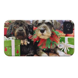 Christmas - Schnauzer Joey - ShihChon Oscar iPhone 4 Cover