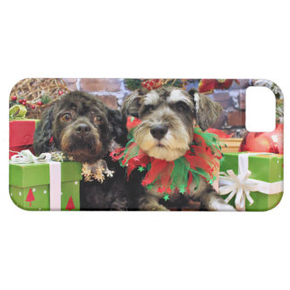 Christmas - Schnauzer Joey - ShihChon Oscar iPhone 5 Cases